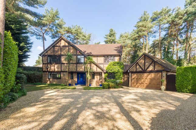 Thumbnail Detached house for sale in Ashley, Ringwood, Hampshire