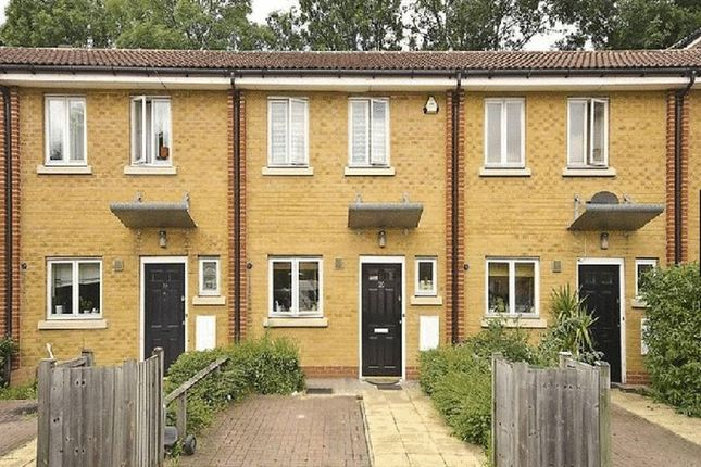 Thumbnail Terraced house to rent in Shalbourne Square, London