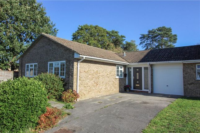Thumbnail Bungalow for sale in Harvard Road, Owlsmoor, Sandhurst, Berkshire