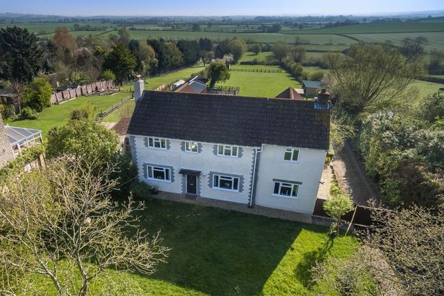 Thumbnail Detached house for sale in Martock Road, Long Load, Langport