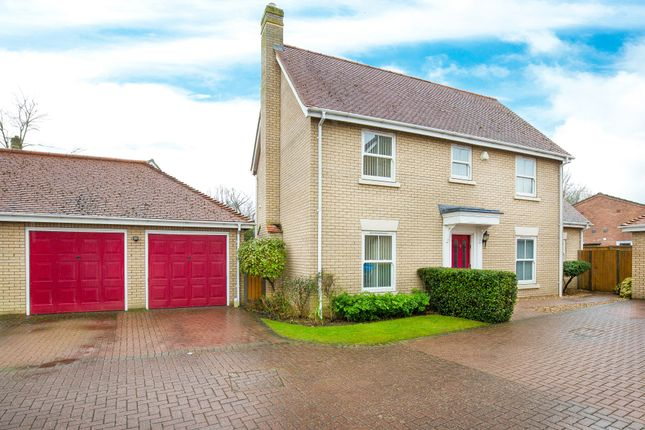 Thumbnail Detached house for sale in Warren Close, Wilburton, Ely, Cambridgeshire