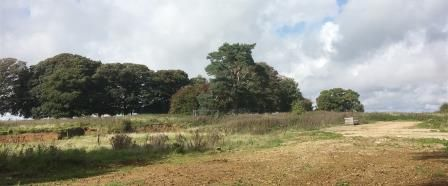 Thumbnail Land for sale in Home Farm, Arpinge, Folkestone, Kent