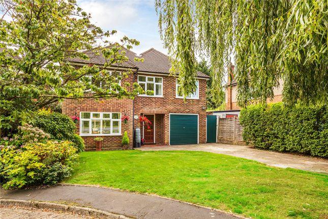 Homes for Sale in Cedar Gardens, Chobham, Woking GU24 - Buy Property ...