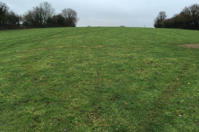 Thumbnail Land for sale in Chittlehamholt, Umberleigh