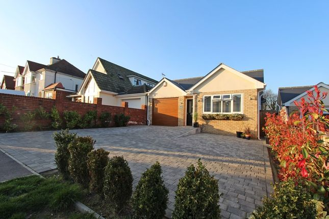 Thumbnail Bungalow for sale in Highams Road, Hawkwell, Hockley