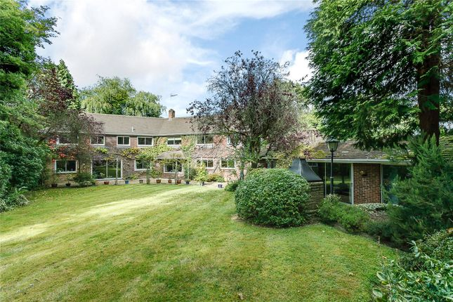 Thumbnail Detached house for sale in St. Marys Road, Ascot, Berkshire