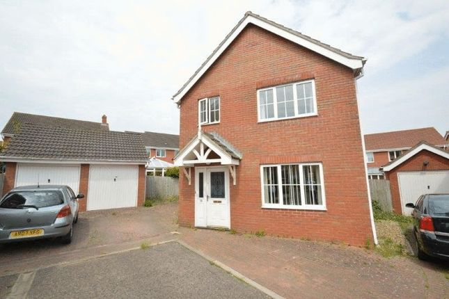 Thumbnail Detached house to rent in Speedwell Close, Norwich