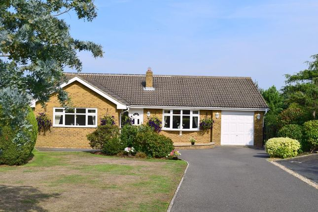 Thumbnail Detached bungalow for sale in Horestone Rise, Seaview, Isle Of Wight