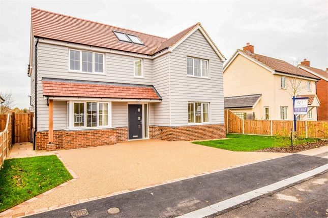 Thumbnail Detached house for sale in St Marys Road, Great Bentley, Colchester, Essex