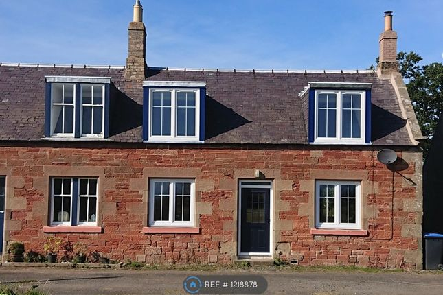 Thumbnail Semi-detached house to rent in Eccles Tofts Farm Cottage, Greenlaw, Duns