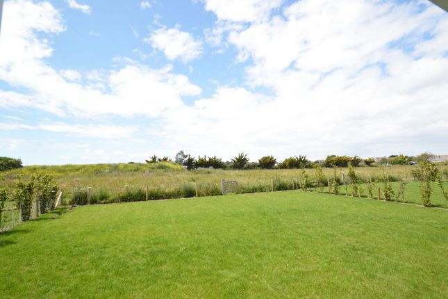 Garden And Meadow