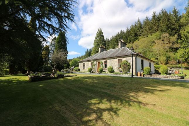 Thumbnail Detached house for sale in Shore Road, Kilmun, Dunoon, Argyll & Bute