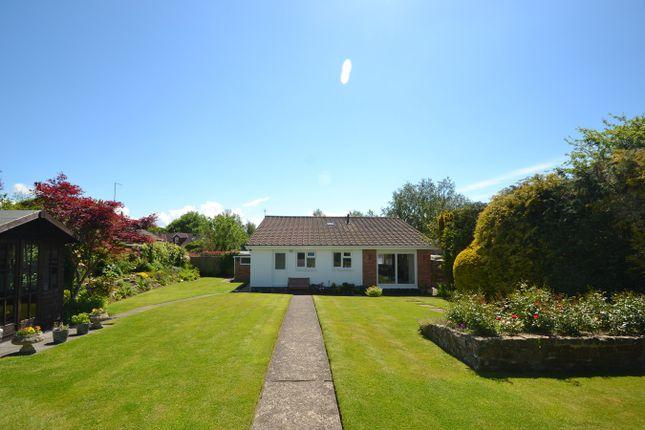 Thumbnail Detached bungalow for sale in Shieling Road, Bickington, Barnstaple