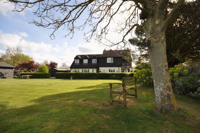 Thumbnail Detached house for sale in Springfield, East Mersea Road, West Mersea