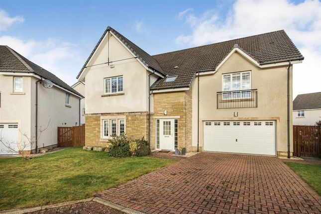Thumbnail Detached house for sale in Drover Round, Larbert