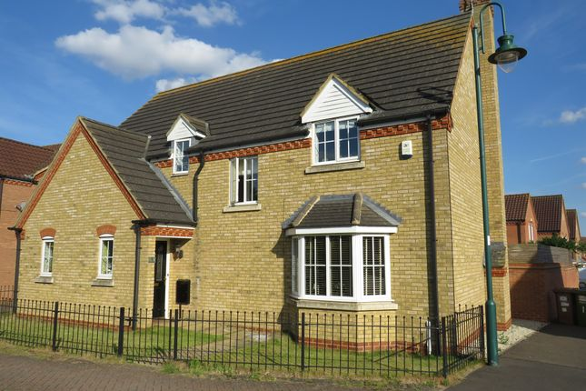Thumbnail Detached house for sale in Thorn Road, Hampton Hargate, Peterborough