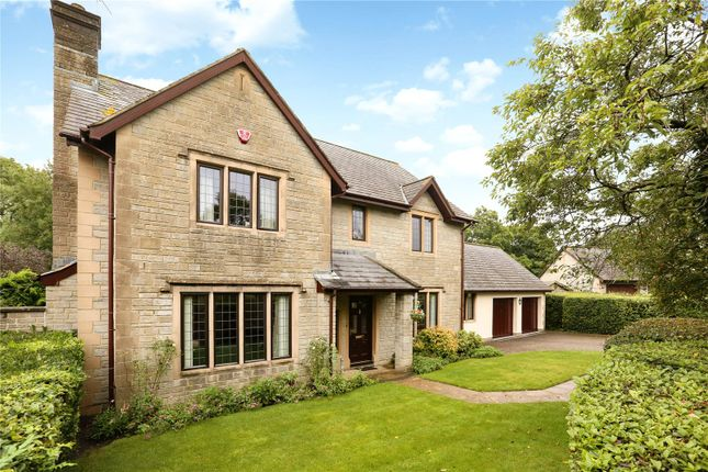 Thumbnail Detached house for sale in Yew Tree Close, Langford, North Somerset
