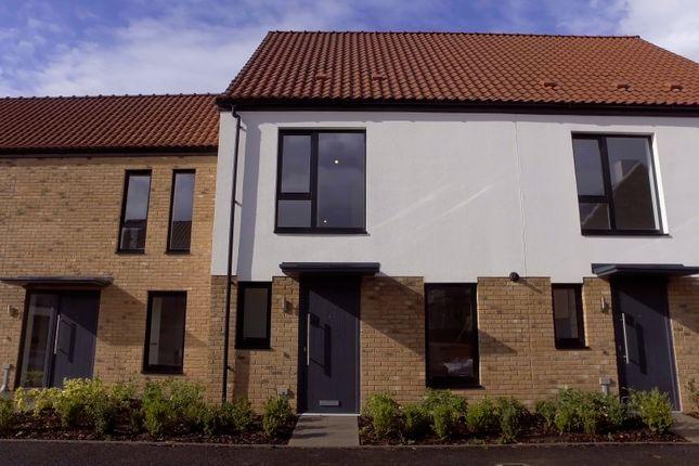 2 bedroom terraced house for sale in Cross Farm, Wedmore