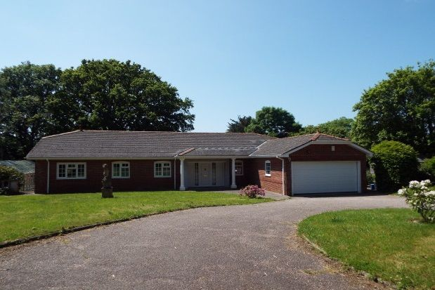 Thumbnail Detached bungalow to rent in Woodbury, Exeter