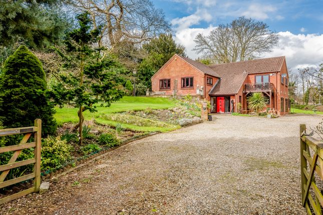 Thumbnail Detached house for sale in Newmarket Road, Cringleford, Norwich