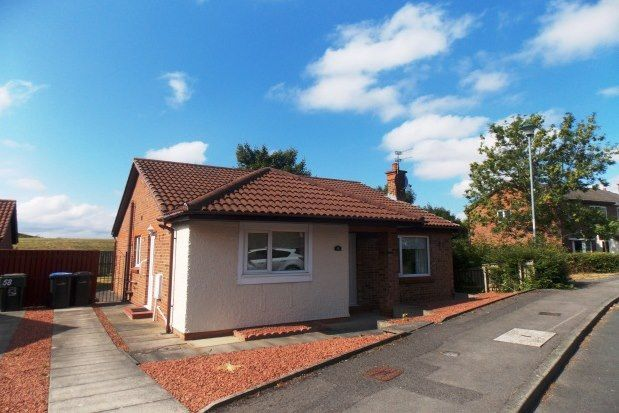 Thumbnail Property to rent in The Birches, Middlesbrough