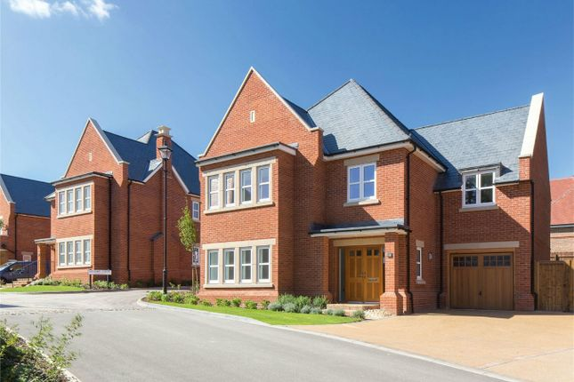 Thumbnail Detached house for sale in Wilshere Park, Welwyn, Hertfordshire