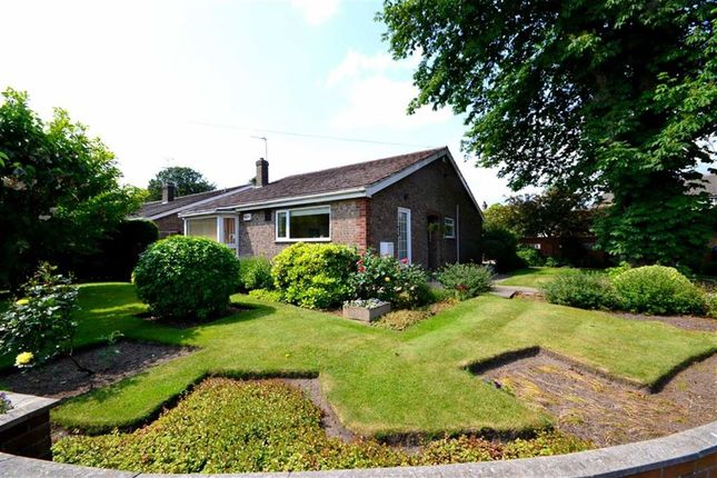 Thumbnail Bungalow for sale in Allanson Drive, Cottingham, East Riding Of Yorkshire