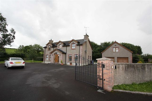 Thumbnail Detached house to rent in Crossgar Road, Ballynahinch, Down