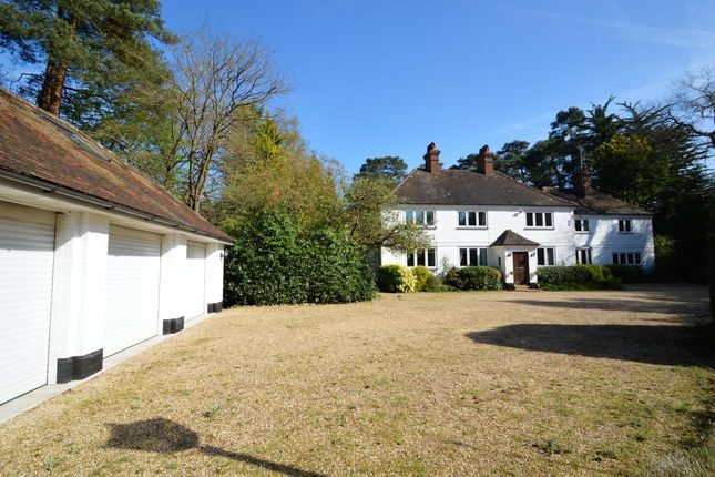 Thumbnail Detached house for sale in The Ridges, Finchampstead