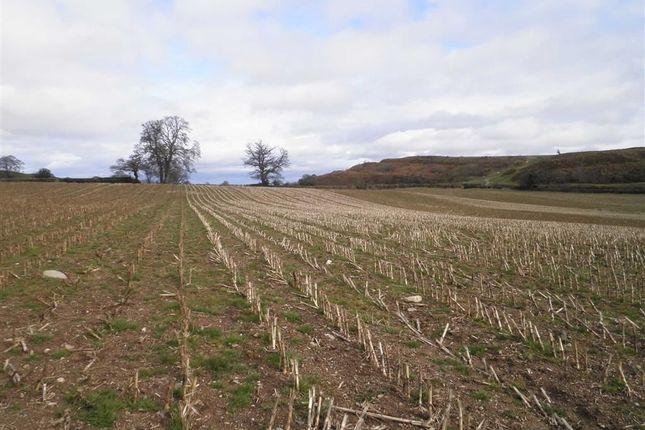 Thumbnail Land for sale in Llwyn Road, Oswestry