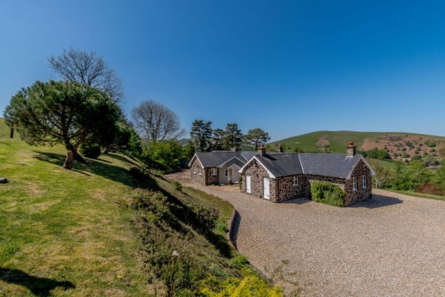 Thumbnail Detached house for sale in Llandinam