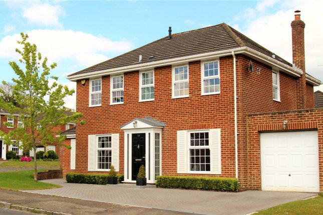 Thumbnail Detached house for sale in Tiltwood Drive, Crawley Down, Crawley
