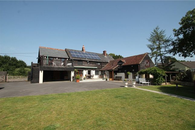 Thumbnail Detached house for sale in The Causeway, Hazelbury Bryan, Sturminster Newton, Dorset