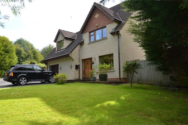 Thumbnail Detached house for sale in Mountain Road, Newtownards, County Down