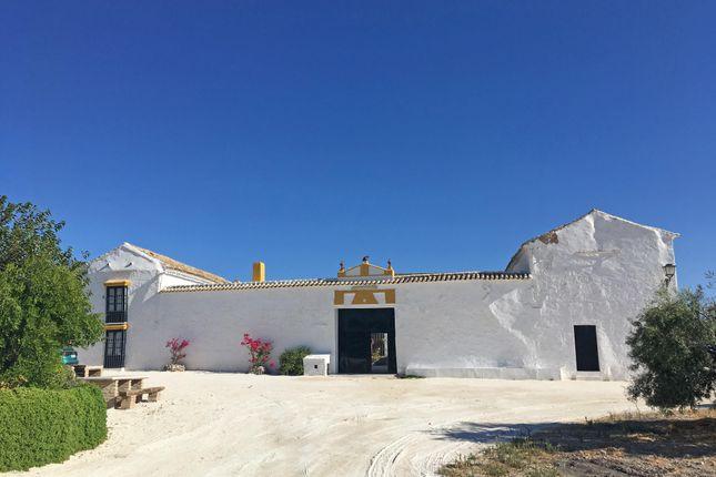 Thumbnail Property for sale in Moron De La Frontera, Andalucia, Spain