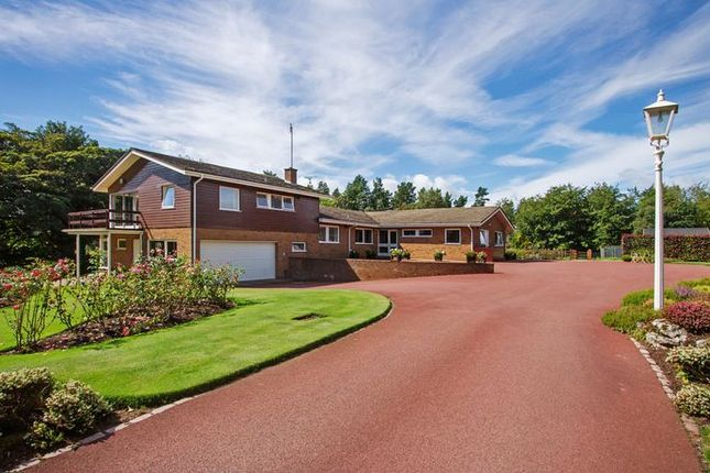 Thumbnail Detached house for sale in Oakwood Lane, Acton, Newcastle-Under-Lyme