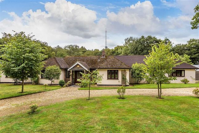 Thumbnail Bungalow for sale in Carlton Road, South Godstone, Surrey