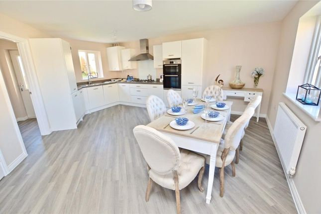 Thumbnail Detached house for sale in Churchinford Hills, Churchinford, Somerset