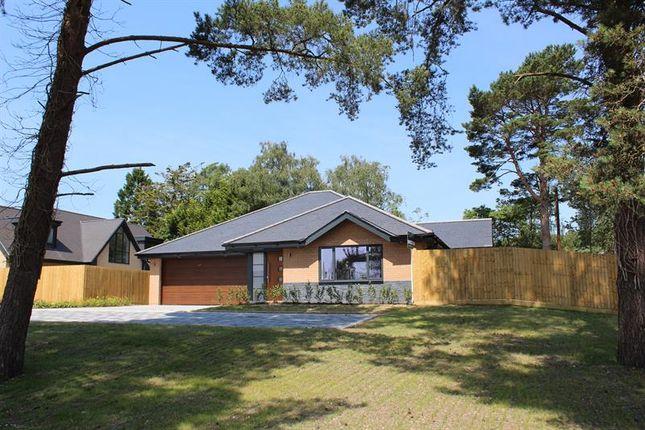Thumbnail Detached bungalow for sale in 51 St. Ives Park, Ashley Heath, Ringwood