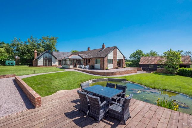 Thumbnail Detached bungalow for sale in Lindsey, Ipswich, Suffolk