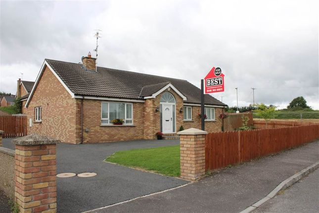 Thumbnail Bungalow for sale in Carquillan, Hilltown, Newry