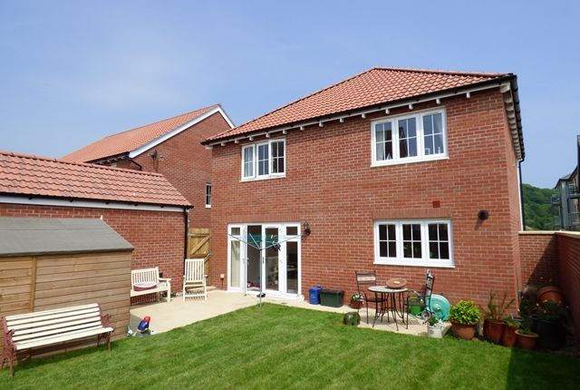 Thumbnail Detached house for sale in Shearwater Way, Seaton