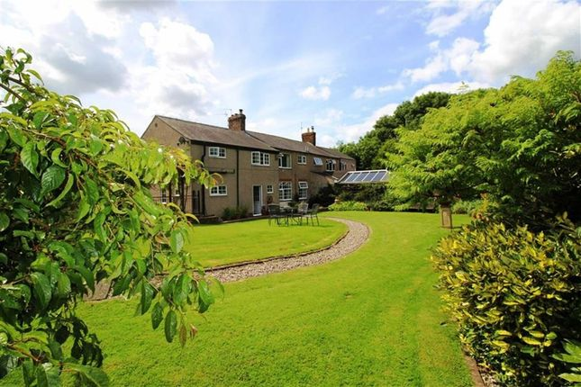Thumbnail Semi-detached house for sale in Johnson Cottages, Long Lane, Codnor, Derbyshire