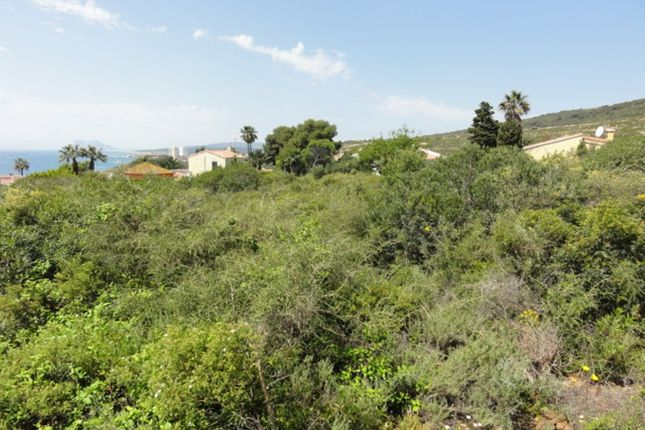 Property For Sale San Diego Spain