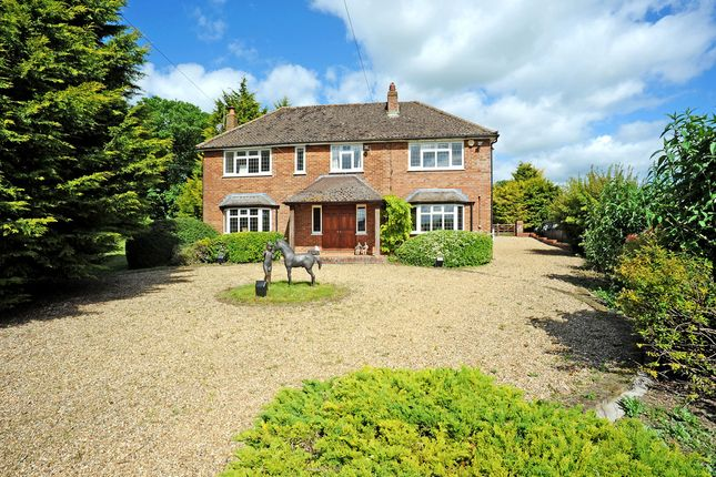 Detached house for sale in Herts, Little Offley, Near Hitchin Equestrian Property