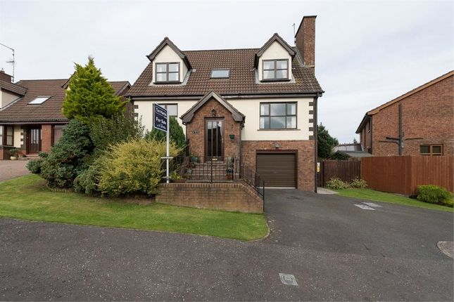 Thumbnail Detached house for sale in Carsons Road, Ballygowan, Newtownards, County Down
