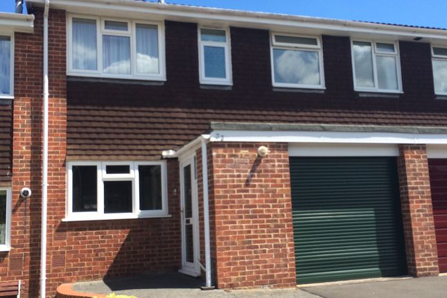 Thumbnail Terraced house to rent in Middleway, Taunton