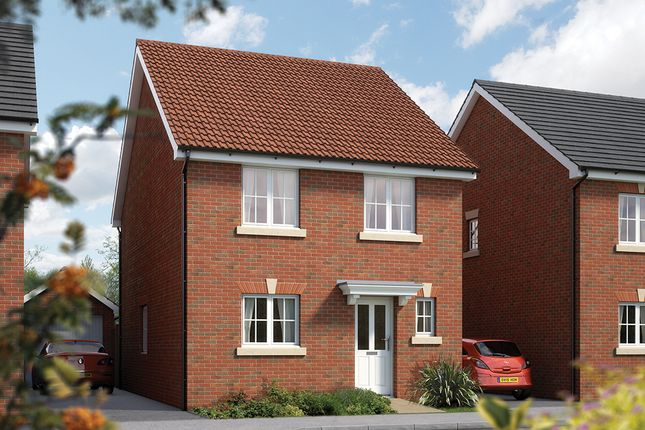 """Thumbnail Detached house for sale in """"The Salisbury"""" at Harbour Road, Seaton"""