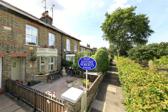 Thumbnail Terraced house to rent in Thetis Terrace, Kew