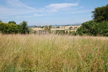 Thumbnail Land for sale in Beech Hill, Coupar Angus